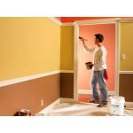 Выбор краски для стен и актуального цветового решения
